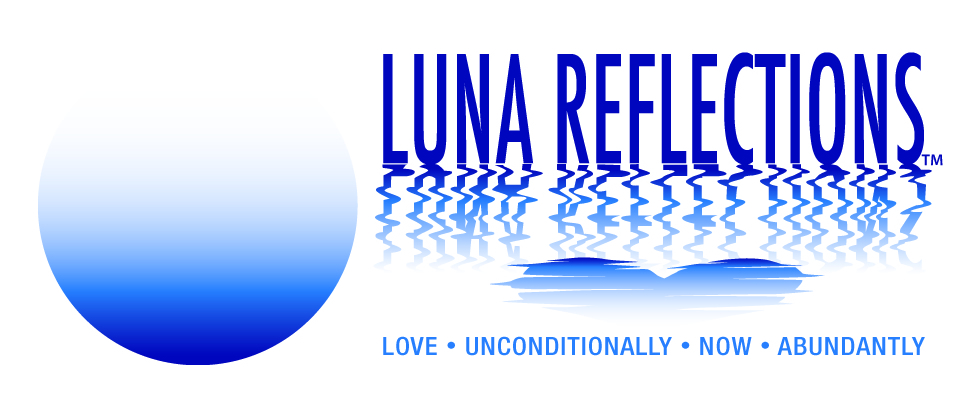 LUNA Reflections Banner Graphic